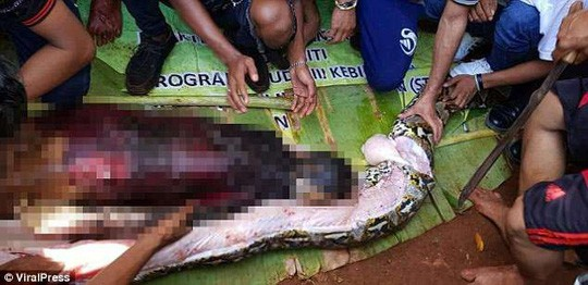 Mổ bụng trăn 8 m, kinh hãi phát hiện thi thể phụ nữ - Ảnh 1.