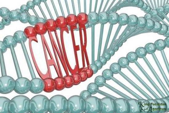 8 dấu hiệu đỏ của ung thư mà bác sĩ của bạn sẽ không bỏ qua - Ảnh 1.