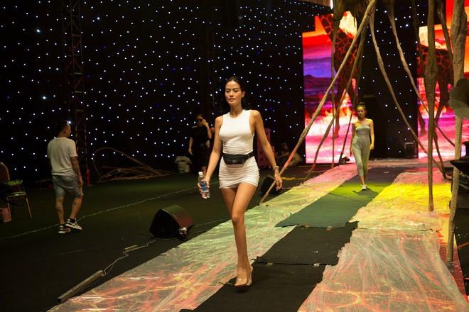 Ngọc Trinh và Hương Giang mải miết tập catwalk trên đôi giày cao 20cm cho show của NTK Đỗ Long - Ảnh 8.