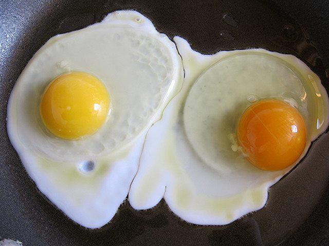 Quả trứng có lòng đỏ sẫm màu khác biệt gì với quả lòng đỏ nhạt? - Ảnh 1.