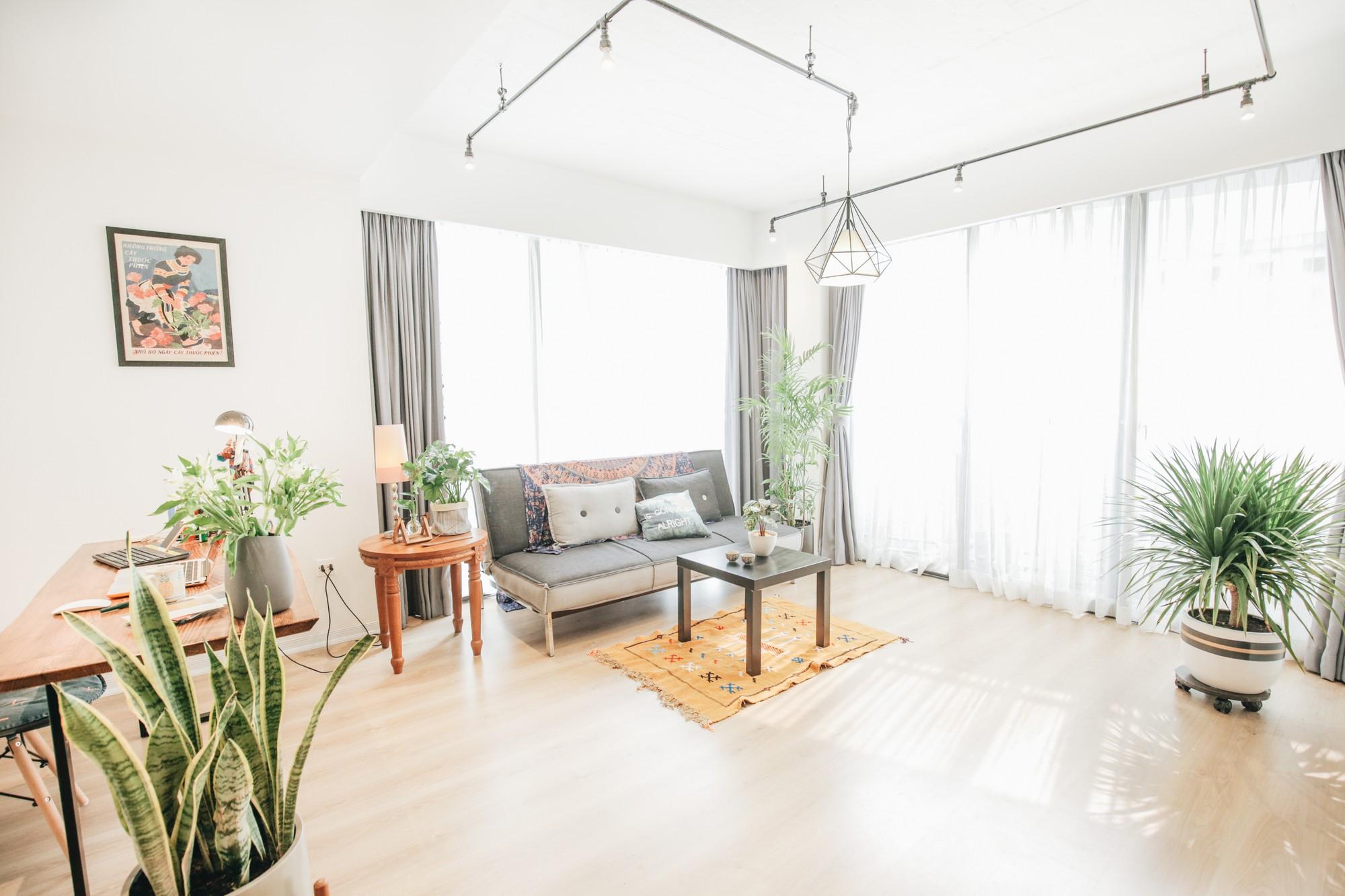 Cây xanh - cách làm mới không gian sống nhanh, rẻ, dễ ứng dụng để đón hè vào nhà - Ảnh 4.