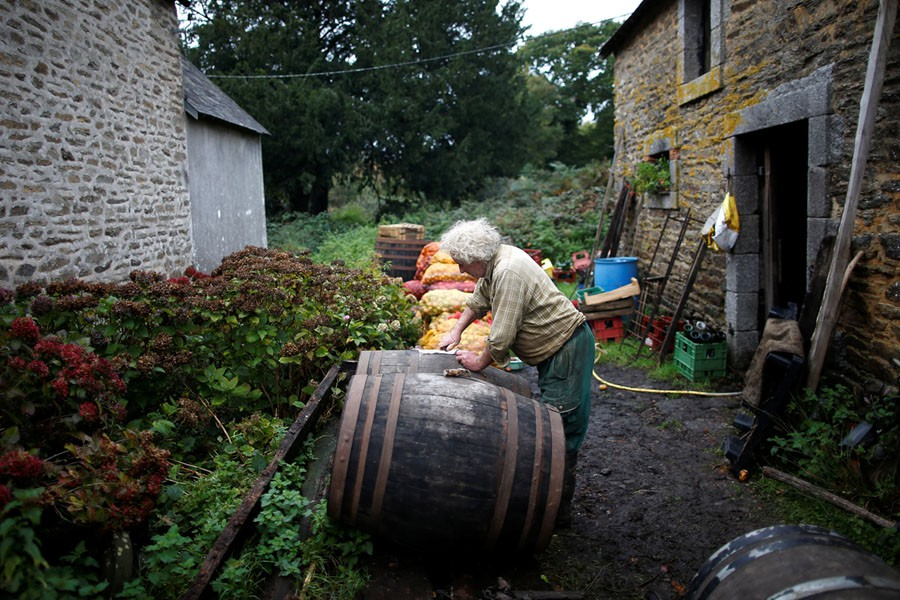 Cuộc sống nông trại yên bình, không sử dụng máy móc công nghiệp của đôi vợ chồng già - Ảnh 10.