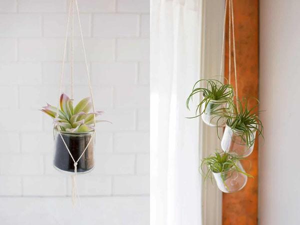 4 cách tái chế lọ thủy tinh làm chậu trồng cây đơn giản mà đẹp - Ảnh 6.