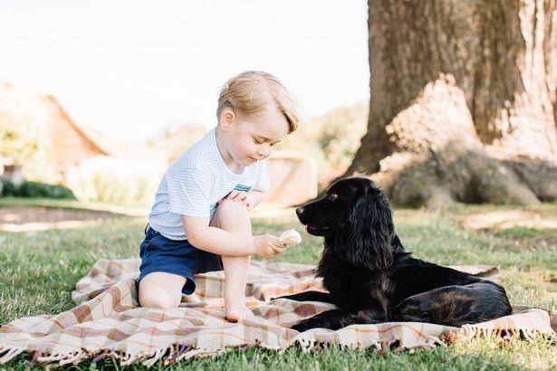 Hơn 40 bức ảnh ghi lại những khoảnh khắc cực đáng yêu cho thấy hành trình lớn lên của Hoàng tử George trong 5 năm đầu đời - Ảnh 25.