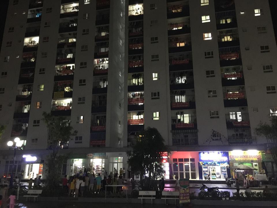 Hà Nội: Nghi án người mẹ trầm cảm giết con và cháu rồi tự tử tại khu đô thị Thanh Hà - Ảnh 1.