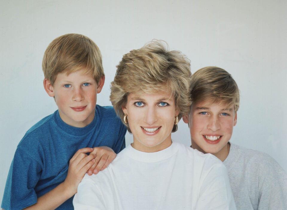 Lời hứa cảm động của William dành cho Công nương Diana: Khi trở thành vua, con sẽ lấy lại tước hiệu hoàng gia cho mẹ - Ảnh 1.