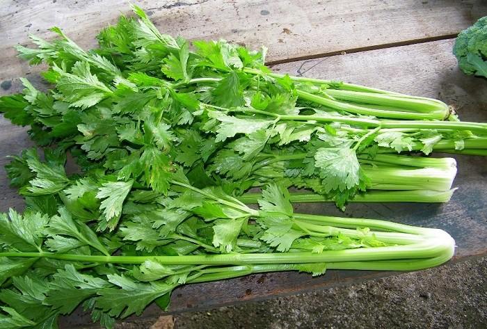 Mấy ngày Hà Nội lại nắng nóng, bổ sung ngay 7 loại thực phẩm giàu nước này để làn da luôn căng bóng, khỏe mạnh - Ảnh 3.
