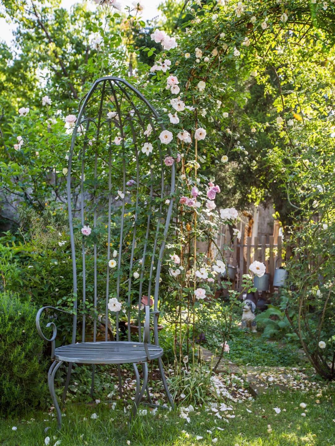 Khu vườn đẹp như chốn thần tiên do người phụ nữ dành tất cả tình yêu trong suốt 16 năm chăm sóc - Ảnh 27.