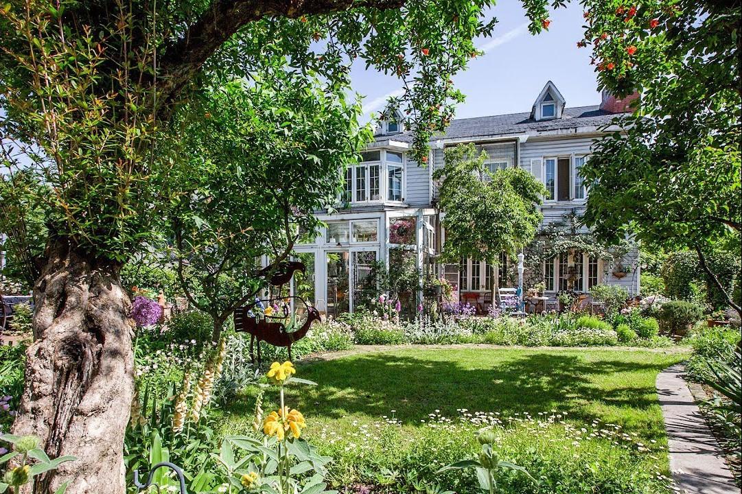 Khu vườn đẹp như chốn thần tiên do người phụ nữ dành tất cả tình yêu trong suốt 16 năm chăm sóc - Ảnh 1.
