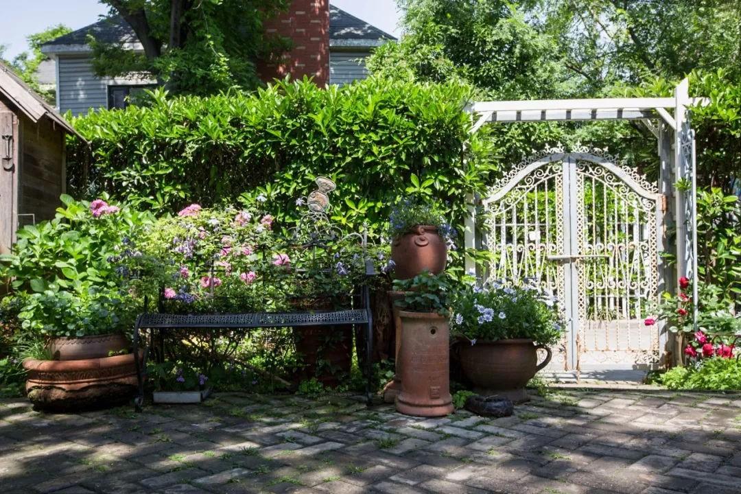 Khu vườn đẹp như chốn thần tiên do người phụ nữ dành tất cả tình yêu trong suốt 16 năm chăm sóc - Ảnh 10.