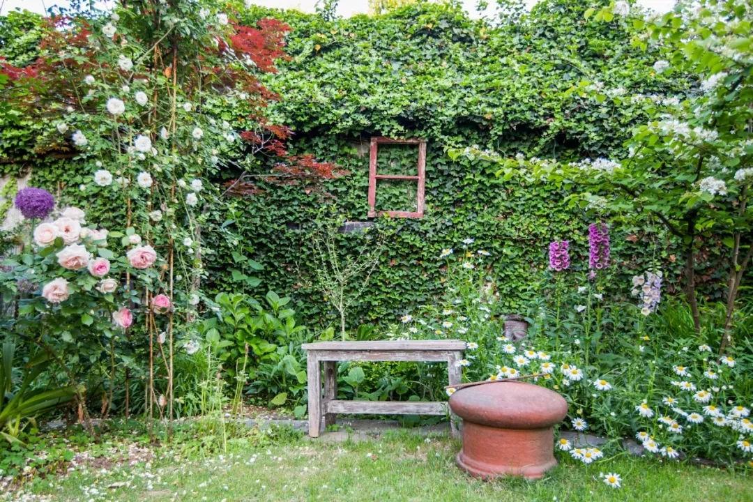 Khu vườn đẹp như chốn thần tiên do người phụ nữ dành tất cả tình yêu trong suốt 16 năm chăm sóc - Ảnh 22.
