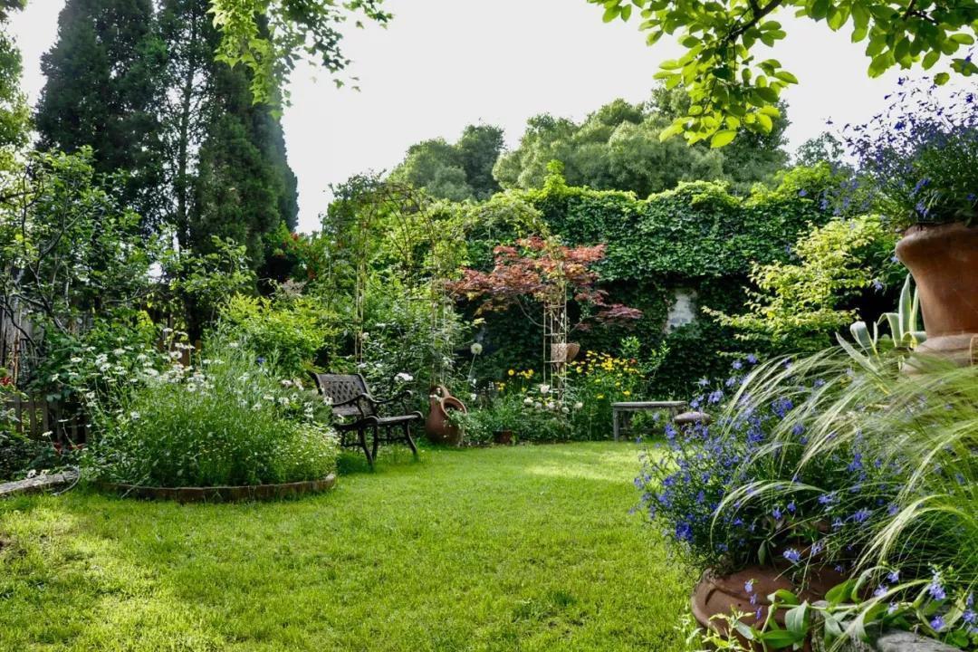Khu vườn đẹp như chốn thần tiên do người phụ nữ dành tất cả tình yêu trong suốt 16 năm chăm sóc - Ảnh 18.
