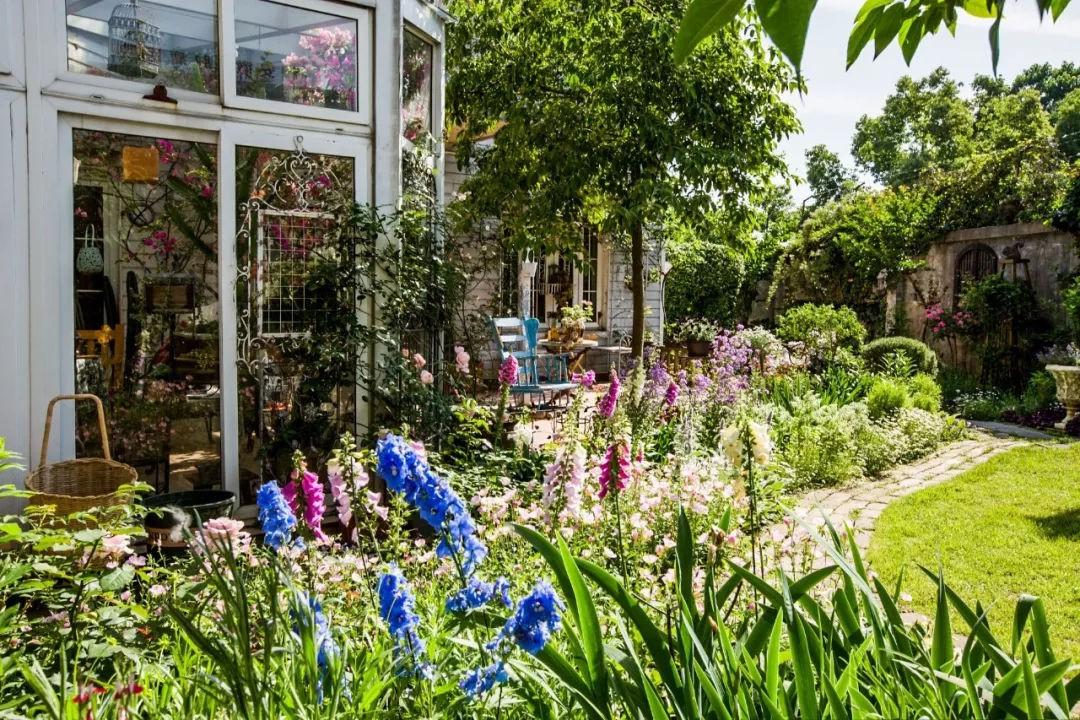 Khu vườn đẹp như chốn thần tiên do người phụ nữ dành tất cả tình yêu trong suốt 16 năm chăm sóc - Ảnh 3.