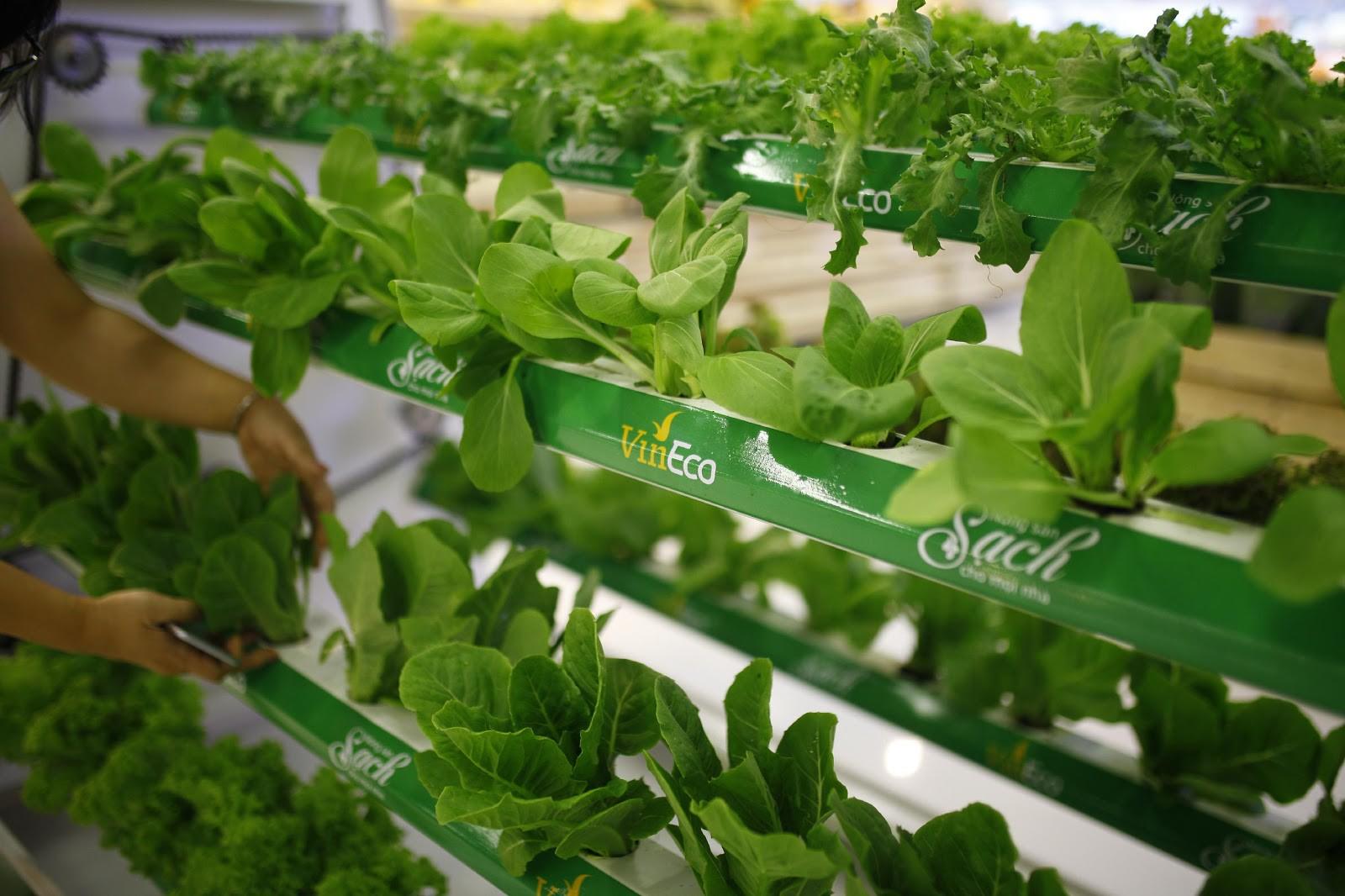 VinMart trong toà nhà cao nhất Việt Nam: khi siêu thị không chỉ đẹp, tiện lợi mà còn là sân chơi cho cả gia đình - Ảnh 14.