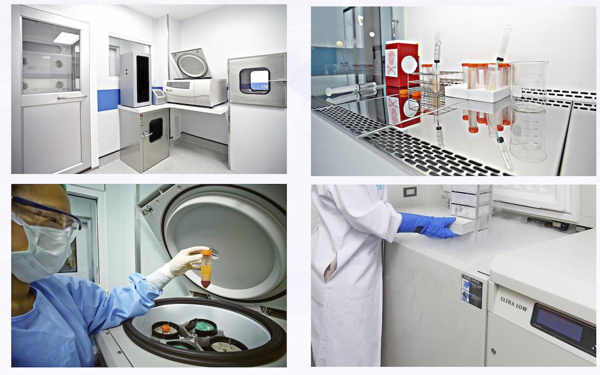 Giải đáp 5 thắc mắc về dùng tế bào gốc - phương pháp hứa hẹn chữa được nhiều bệnh nan y - Ảnh 4.