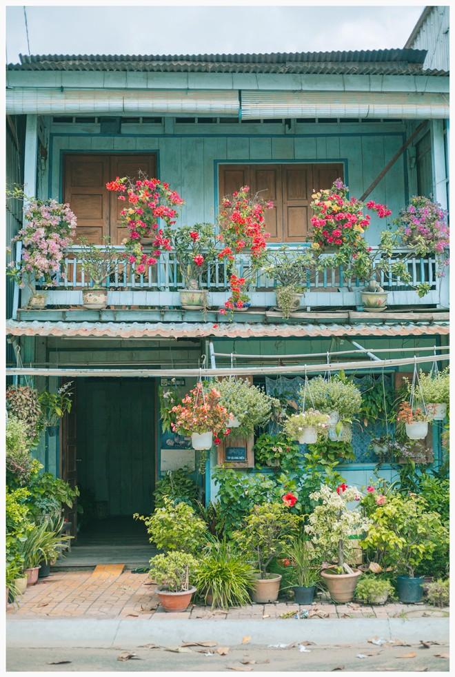 Giữa thành phố Long Xuyên (An Giang) có một ngôi nhà xanh mát và bình yên đến mức khiến ai cũng phải ao ước - Ảnh 1.