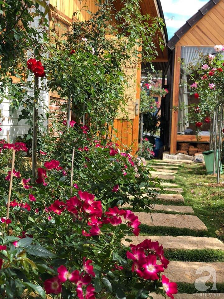Người bố trồng cả vườn hồng đẹp như mơ để dành tặng con gái yêu ở Đà Lạt - Ảnh 5.