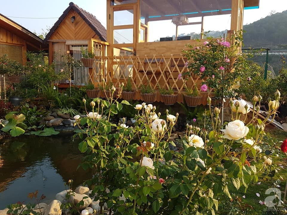 Người bố trồng cả vườn hồng đẹp như mơ để dành tặng con gái yêu ở Đà Lạt - Ảnh 15.