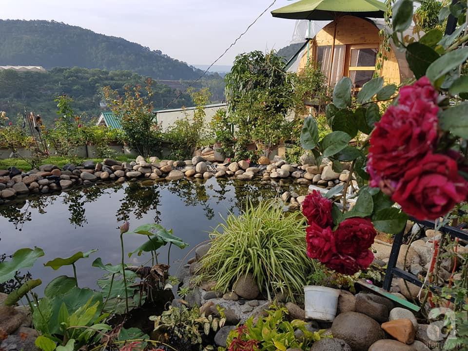 Người bố trồng cả vườn hồng đẹp như mơ để dành tặng con gái yêu ở Đà Lạt - Ảnh 11.