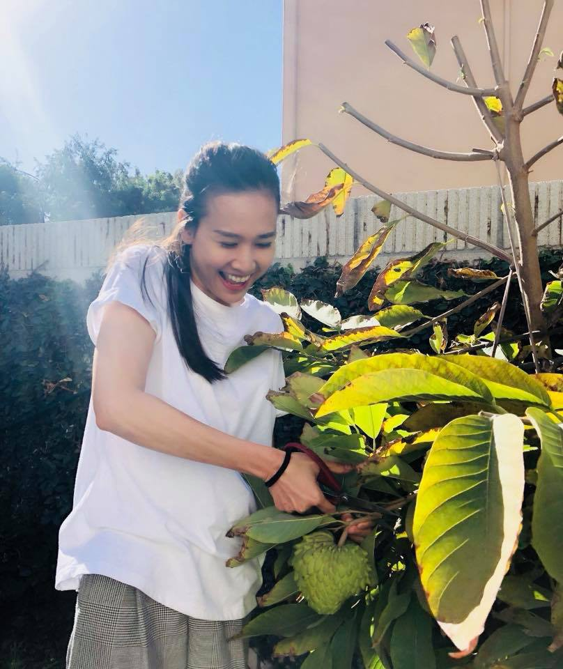 Khu vườn ngọt ngào với hoa hồng và cây trái sai trĩu trên đất Mỹ của Hoa hậu Dương Mỹ Linh - Ảnh 7.