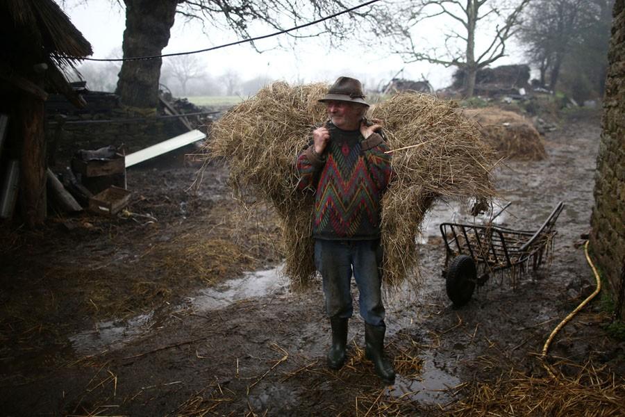 Cuộc sống nông trại yên bình, không sử dụng máy móc công nghiệp của đôi vợ chồng già - Ảnh 1.
