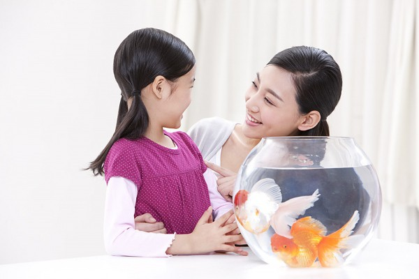 Giả vờ ngốc nghếch - Cách giúp con tự tin bố mẹ có con nhút nhát phải đọc ngay - Ảnh 2.