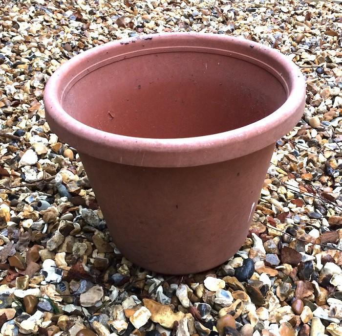 12 gạch đầu dòng cơ bản giúp bạn trồng cà chua trong vườn nhà vừa ngon, sạch lại năng suất - Ảnh 12.