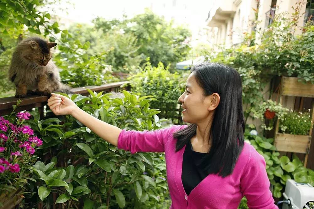 Khu vườn bình yên như xứ sở thần tiên ngập tràn hoa lá do cô gái tận tụy bỏ cả thanh xuân để chăm bón suốt 10 năm - Ảnh 2.