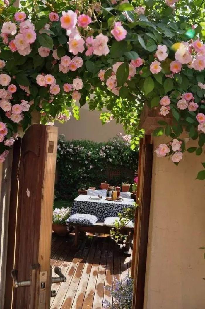 Khu vườn bình yên như xứ sở thần tiên ngập tràn hoa lá do cô gái tận tụy bỏ cả thanh xuân để chăm bón suốt 10 năm - Ảnh 1.
