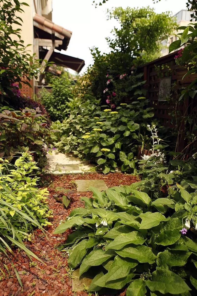 Khu vườn bình yên như xứ sở thần tiên ngập tràn hoa lá do cô gái tận tụy bỏ cả thanh xuân để chăm bón suốt 10 năm - Ảnh 17.