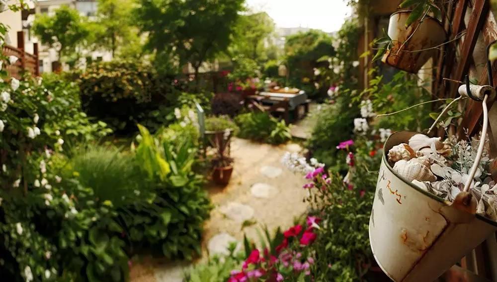 Khu vườn bình yên như xứ sở thần tiên ngập tràn hoa lá do cô gái tận tụy bỏ cả thanh xuân để chăm bón suốt 10 năm - Ảnh 5.