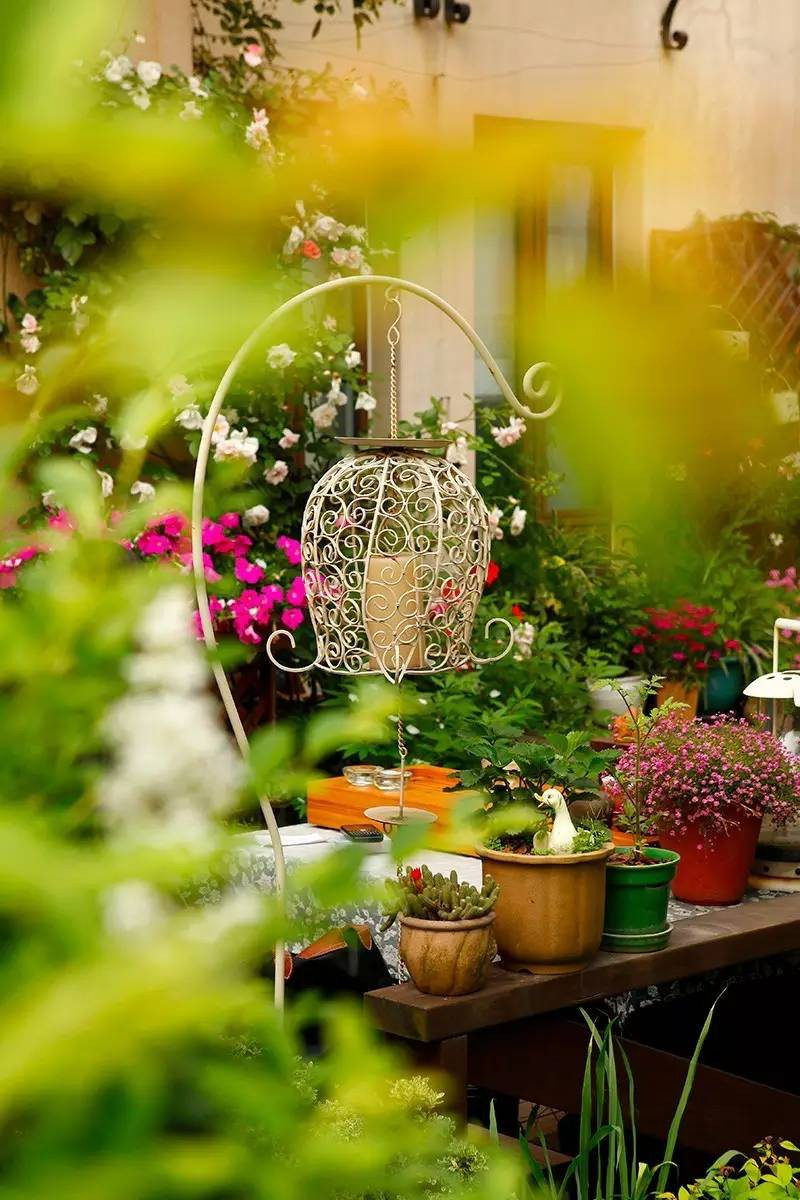 Khu vườn bình yên như xứ sở thần tiên ngập tràn hoa lá do cô gái tận tụy bỏ cả thanh xuân để chăm bón suốt 10 năm - Ảnh 9.