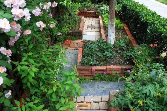 Khu vườn bình yên như xứ sở thần tiên ngập tràn hoa lá do cô gái tận tụy bỏ cả thanh xuân để chăm bón suốt 10 năm - Ảnh 4.