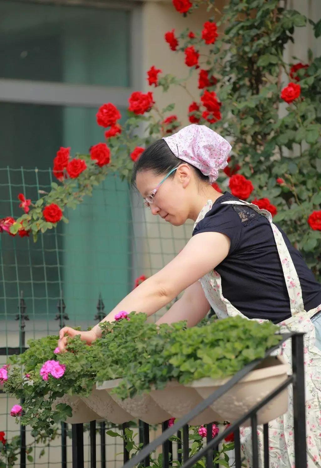 Ngôi nhà tràn ngập sắc hoa hồng ở thị trấn nhỏ của cô gái dành cả thanh xuân chỉ để trồng hoa làm đẹp nhà - Ảnh 13.