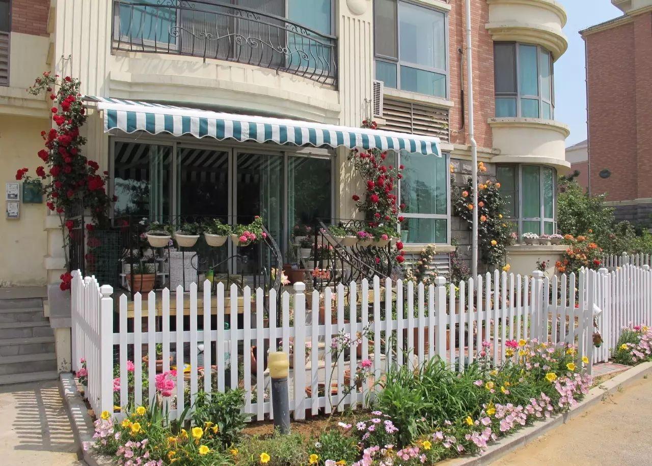Ngôi nhà tràn ngập sắc hoa hồng ở thị trấn nhỏ của cô gái dành cả thanh xuân chỉ để trồng hoa làm đẹp nhà - Ảnh 3.