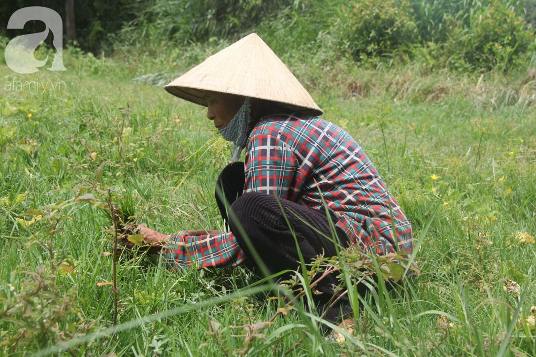Vợ chồng già cắt cỏ thuê nuôi 4 người con tâm thần: Nhờ mọi người giúp đỡ, con tôi không còn nhịn đói nữa - Ảnh 5.