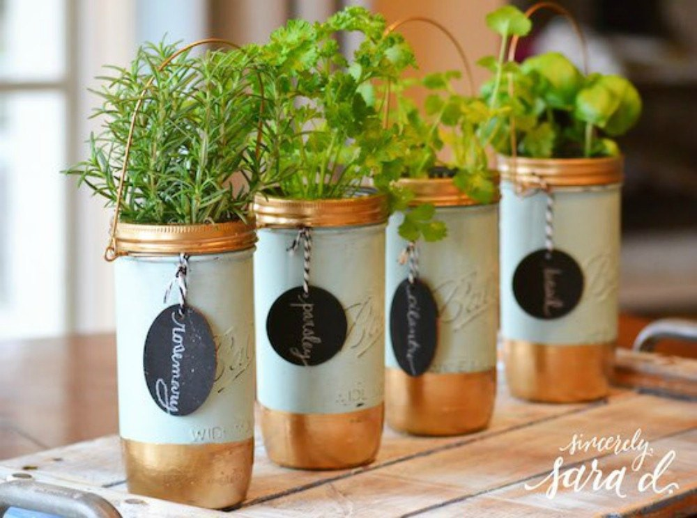 15 ý tưởng cho thấy chỗ nào trong nhà bạn cũng có thể trồng cây gia vị siêu xinh  - Ảnh 10.