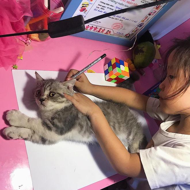 Góc sáng tạo: Được cô giáo giao bài tập vẽ con mèo, bé gái bê luôn boss nhà ra photo cho nhanh - Ảnh 1.