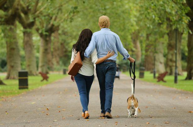 Người hâm mộ thích thú khi nhìn thấy Hoàng tử Harry và Meghan dắt thú cưng đi dạo trong công viên, đến tận nơi mới giật mình - Ảnh 6.