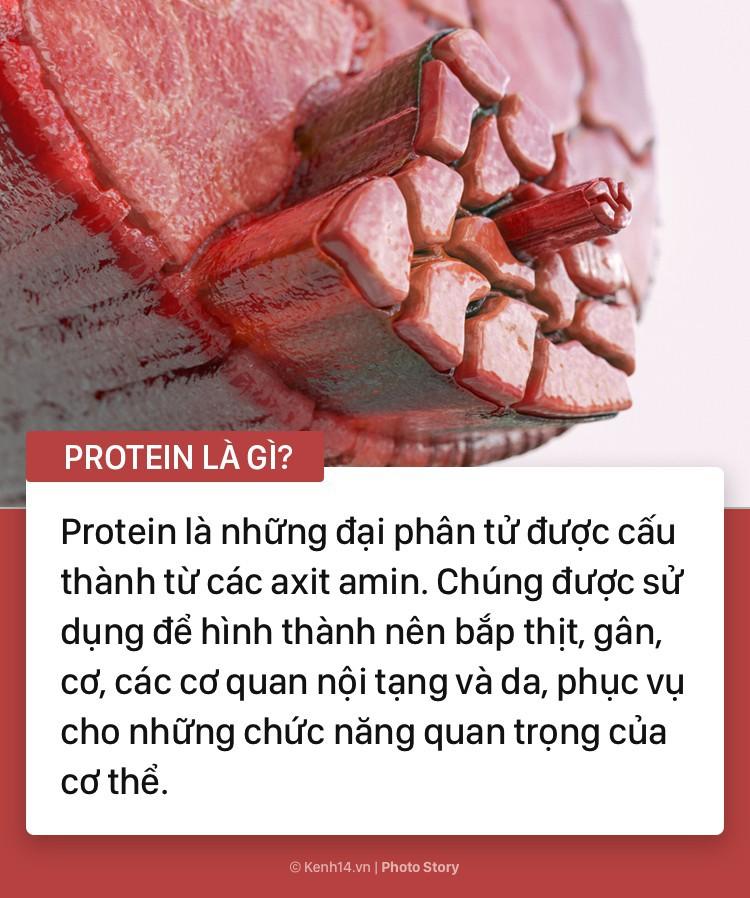 Protein là gì mà bạn không thể thiếu nó trong bữa ăn của mình - Ảnh 1.