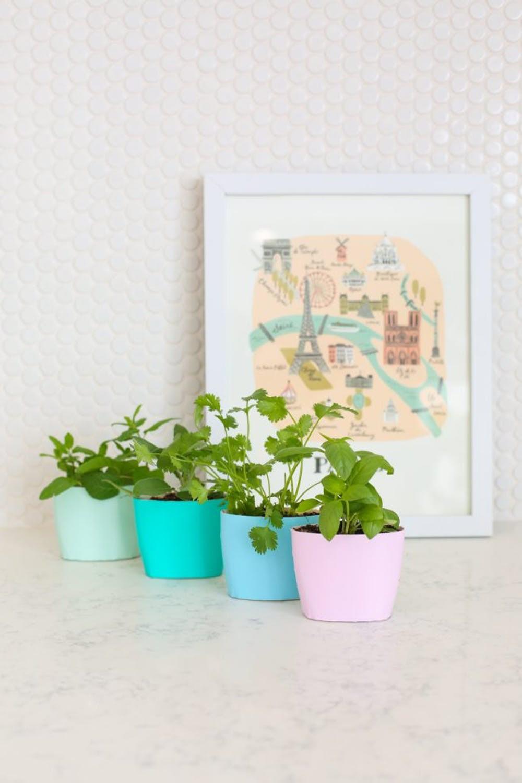 15 ý tưởng cho thấy chỗ nào trong nhà bạn cũng có thể trồng cây gia vị siêu xinh  - Ảnh 2.
