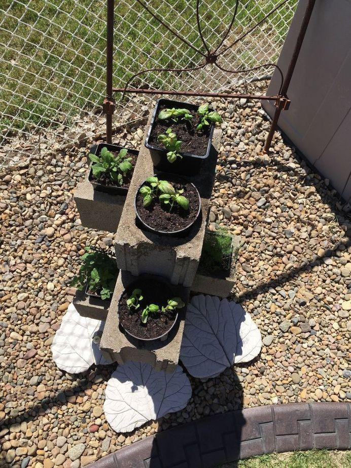 15 ý tưởng cho thấy chỗ nào trong nhà bạn cũng có thể trồng cây gia vị siêu xinh  - Ảnh 16.