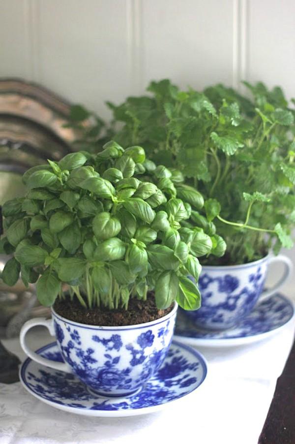 15 ý tưởng cho thấy chỗ nào trong nhà bạn cũng có thể trồng cây gia vị siêu xinh  - Ảnh 3.