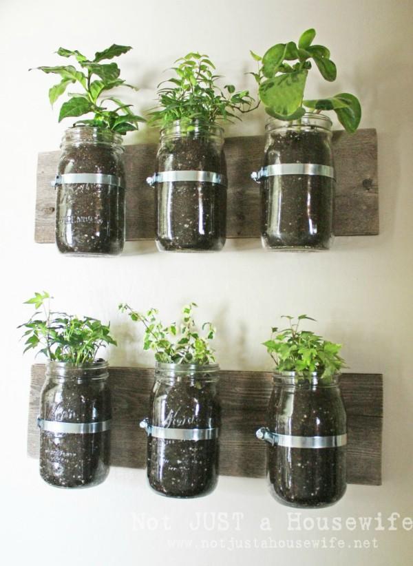 15 ý tưởng cho thấy chỗ nào trong nhà bạn cũng có thể trồng cây gia vị siêu xinh  - Ảnh 6.