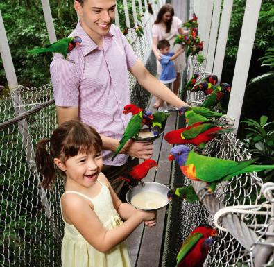 Cùng gia đình khám phá một mùa hè đầy màu sắc tại Singapore - Ảnh 3.