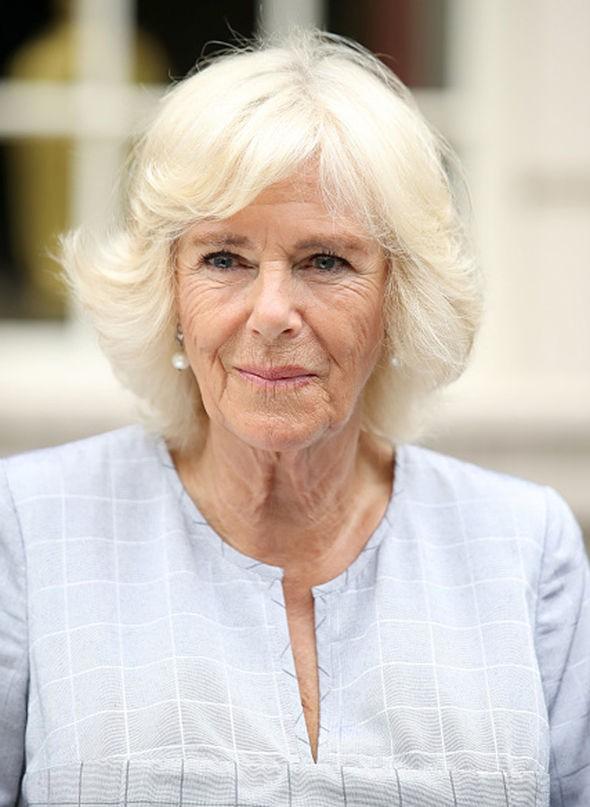 Không chỉ chê Meghan già, tầm thường, từng qua một lần đò, bà Camilla còn liên tục ra đòn tấn công con dâu như thế này đây - Ảnh 1.