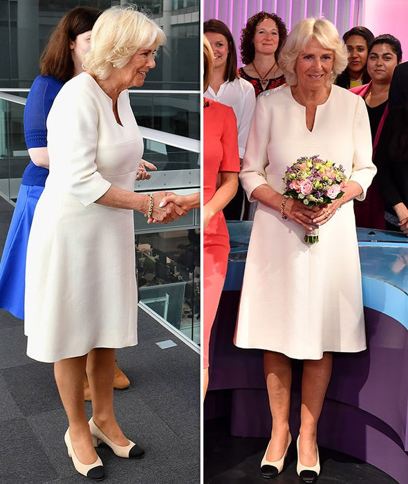 camilla-duchess-of-cornwall-pictures-1354028
