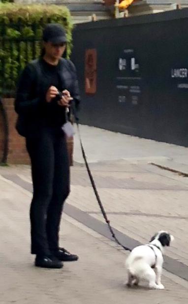 Bức ảnh Meghan mặc đồ đen dắt chó cưng đi vệ sinh bên ngoài cung điện hoàng gia được lan truyền chóng mặt và gây tranh cãi vì điều này - Ảnh 1.