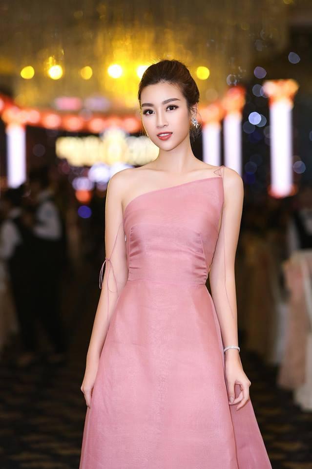Đỗ Mỹ Linh: Từ cô gái bị chê bầm dập với nhan sắc thiếu mì chính lúc đăng quang đến danh xưng Hoa hậu bảo vật quốc gia - Ảnh 2.