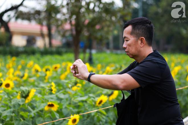 Những ngày mùa đông này, đã có khu vườn ngàn mặt trời nhỏ ở Hà Nội cho chị em chụp ảnh làm vui - ảnh 8